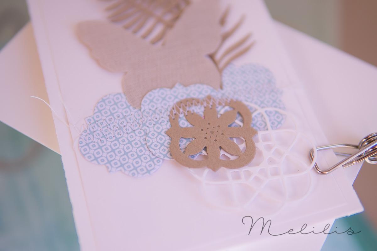 Caros Schmetterling